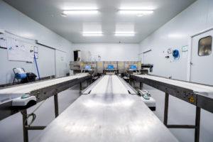 Sala blanca y máquina clasificadora de Granjas Rodríguez 01