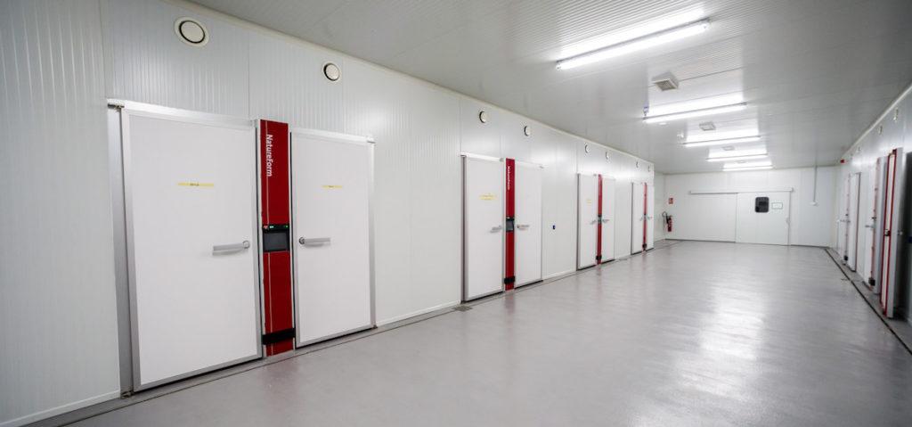 Sala blanca con incubadoras Granjas Rodríguez